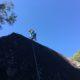 Recent Climbing Tour